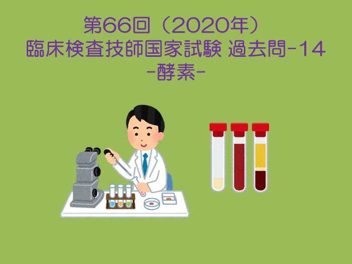 第66回 臨床検査技師国試 生化学(酵素) 過去問-14